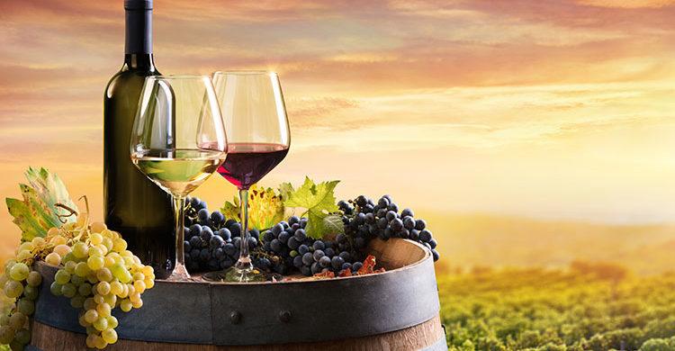 Vini made in Italy: è nata la prima banca dati isotopica